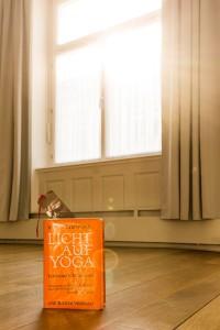 B.K.S. Iyengar: Licht auf Yoga